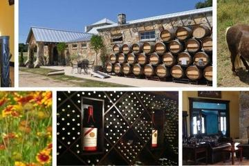Pet Friendly Wimberley Valley Winery