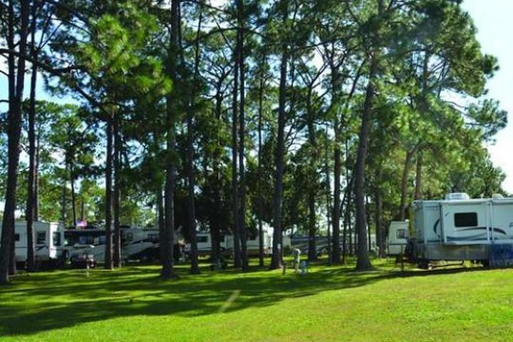 Pet Friendly Southern Palms RV Resort