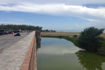Pet Friendly Fort Zachary Taylor State Park