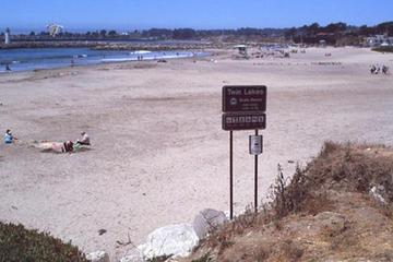 Pet Friendly Twin Lakes State Beach