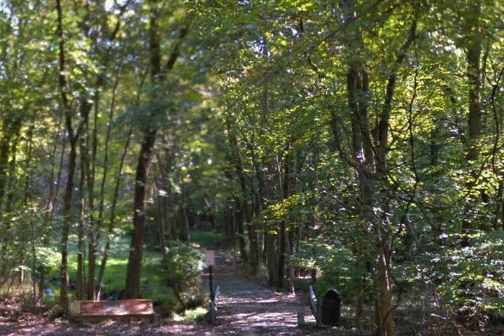 Pet Friendly Wood Dale Park South Dog Run