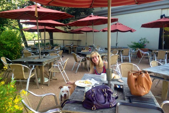 Pet Friendly The Buffalo Grille