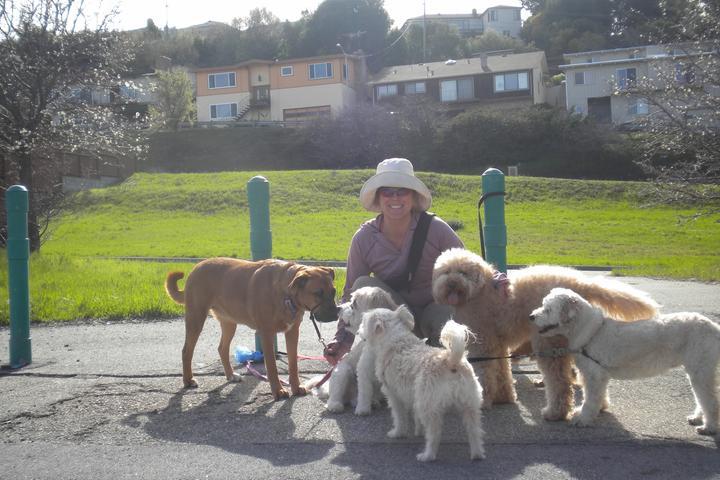 Pet Friendly Pawsitive Energy