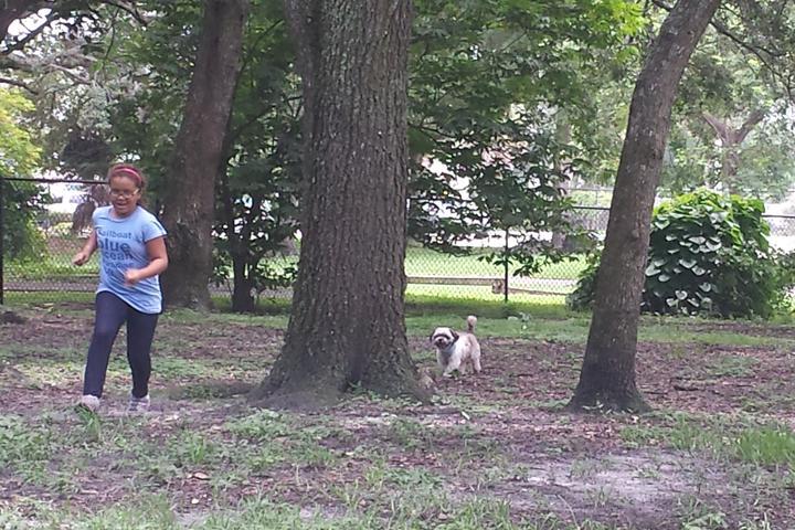 Pet Friendly John Williams Dog Park