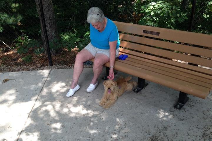Pet Friendly Falmouth Dog Park