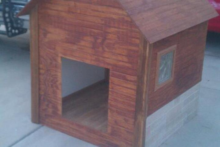 Pet Friendly House for Paws