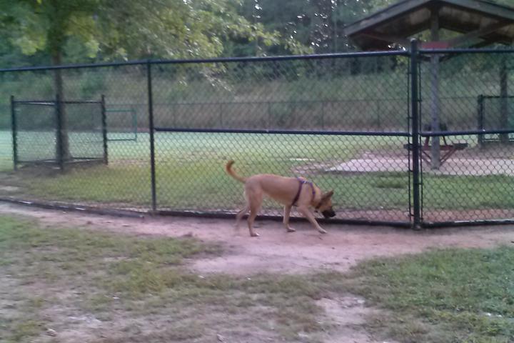 Pet Friendly Graves Dog Park