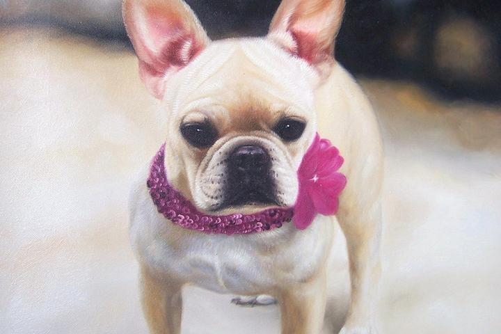 Pet Friendly Oil Painted Pet PortraitsOn Canvas