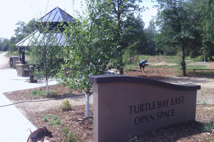 Pet Friendly Turtle Bay East Park