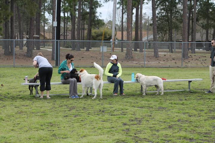 Pet Friendly Biloxi Dog Park