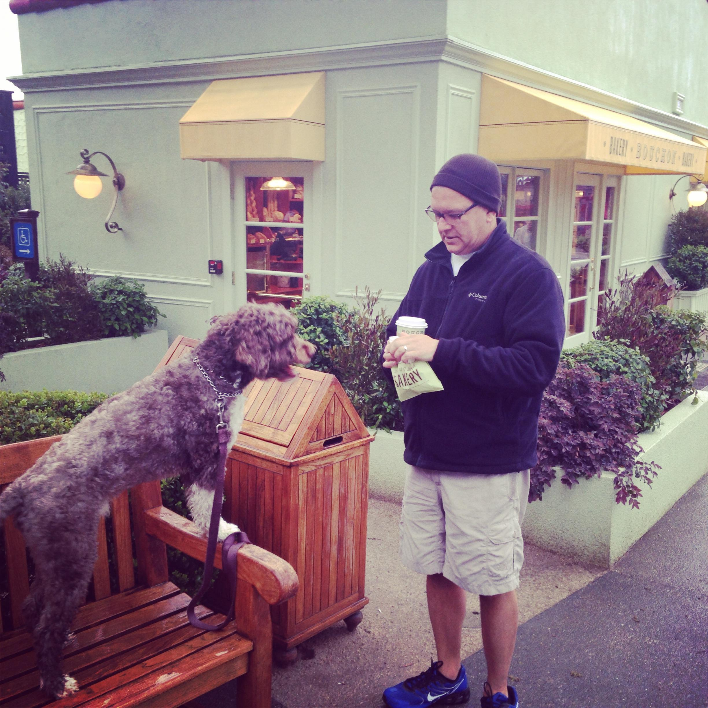 Yountville Dog Friendly Restaurants