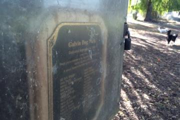 Pet Friendly Galvin Community Dog Park
