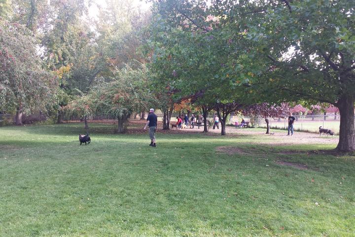 Pet Friendly Norman & Nellie Byrd Dog Park