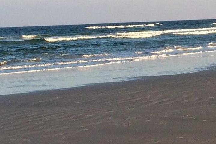 Pet Friendly St. Augustine Beaches