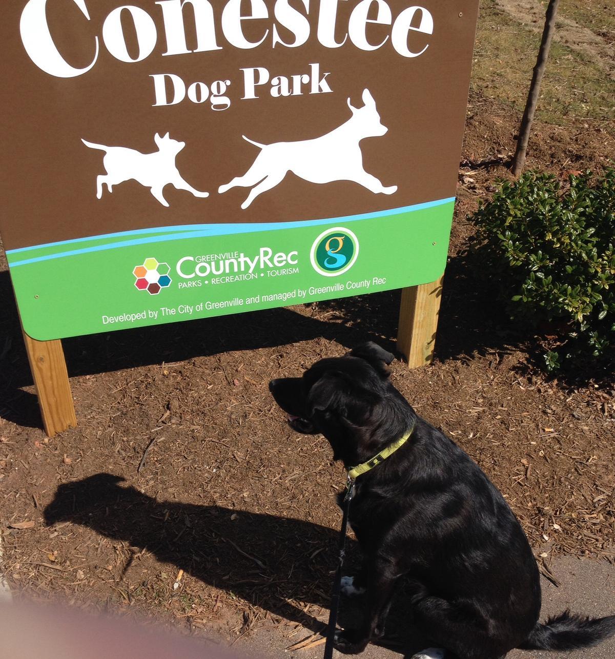 Conestee Dog Park