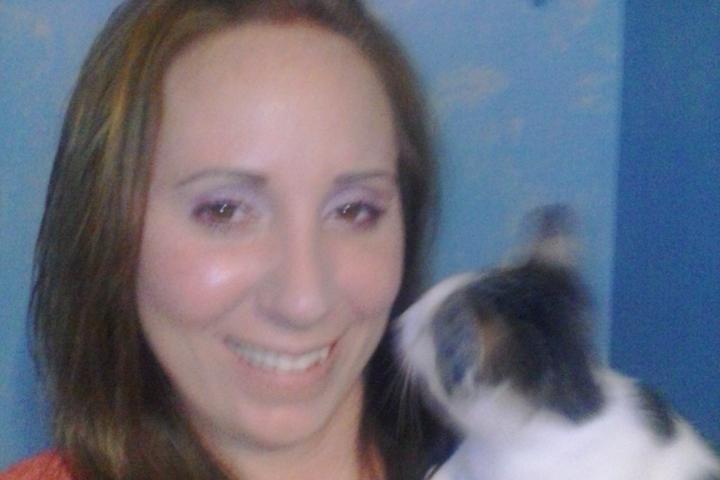 Pet Friendly Villages All Star Pet Services