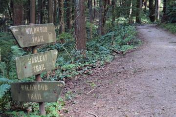 Pet Friendly Wildwood Trail, Forest Park