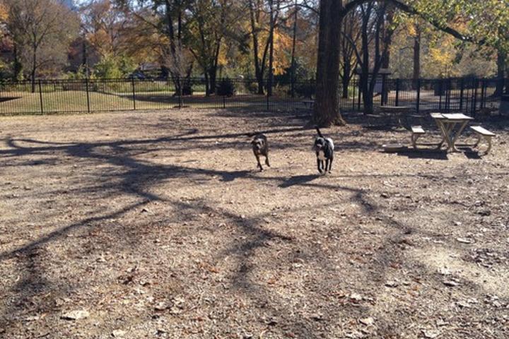 Pet Friendly Mallard and Clark's Creek Greenway
