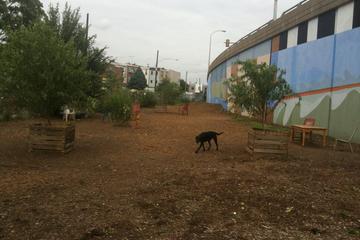Pet Friendly Triangle Dog Park