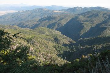 Pet Friendly Barker Valley Trail