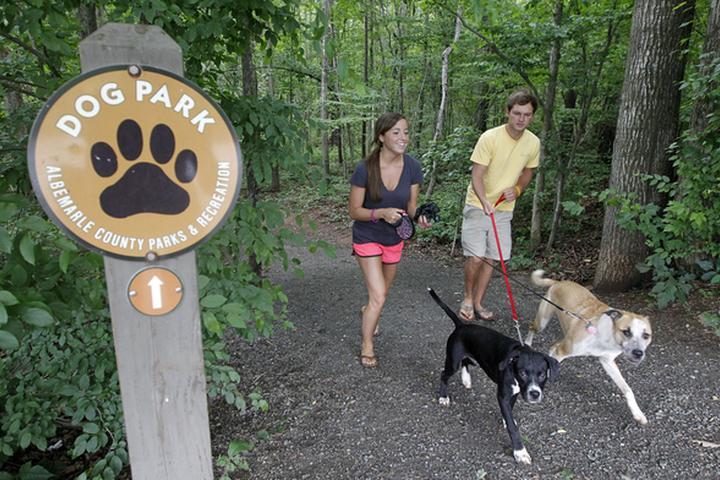 Pet Friendly Azalea Dog Park