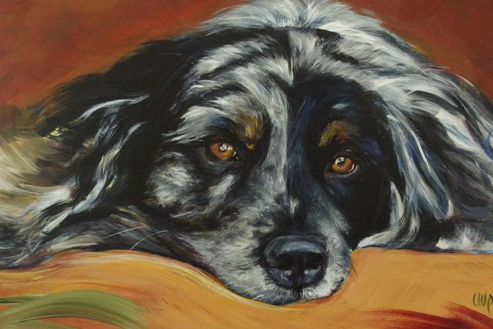 Pet Friendly CWP Paintings