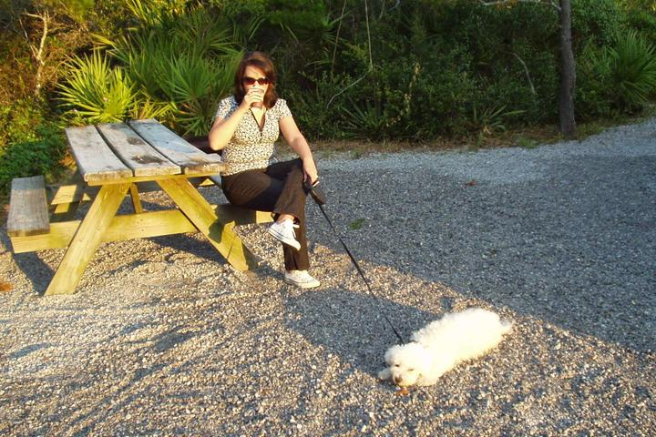 Pet Friendly Henderson Beach State Park