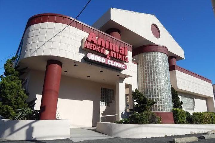 Pet Friendly Animal Medical Hospital & Bird Clinic