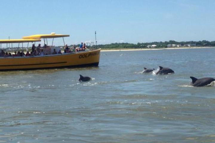 Pet Friendly Captain Mike's Dolphin Tours