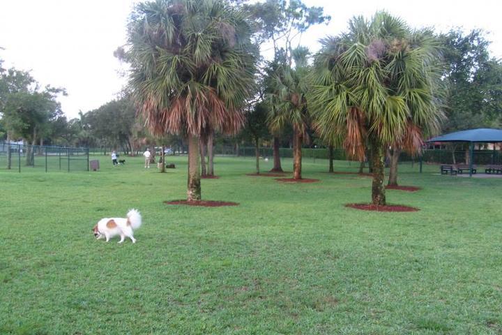 Pet Friendly Mizner Bark - Boca Raton Dog Park