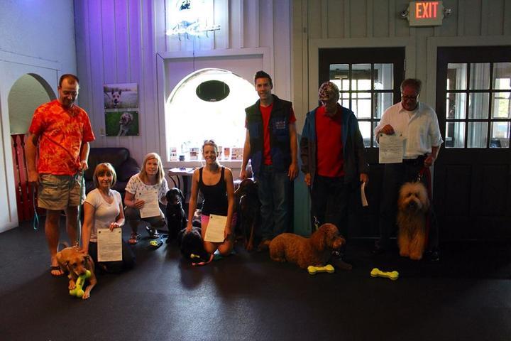 Pet Friendly Canine Scholars Dog Training