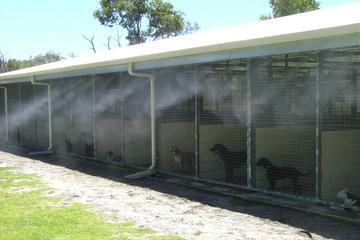 Pet Friendly Mist Air