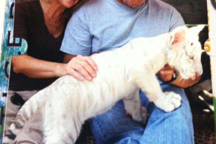 Pet Friendly PawPurr Pet Care