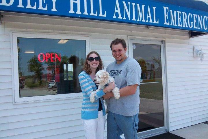 Pet Friendly Diley Hill Animal Emergency Center