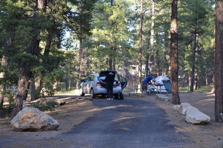 Pet Friendly Mather Campground