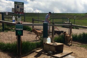 Pet Friendly David A. Lorenz Regional Dog Park