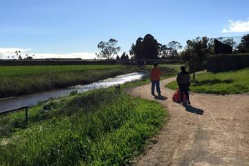Pet Friendly Watsonville Slough National Wildlife Refuge and Trail System