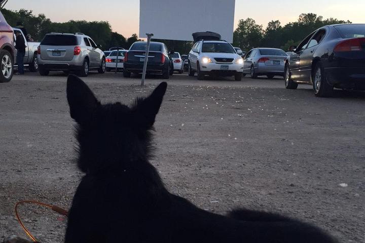 Pet Friendly Vali-Hi Drive In Theatre