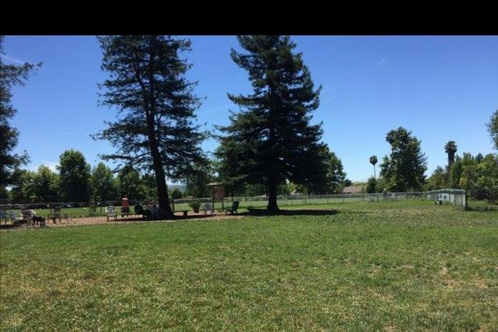 Pet Friendly Rincon Valley Community Dog Park
