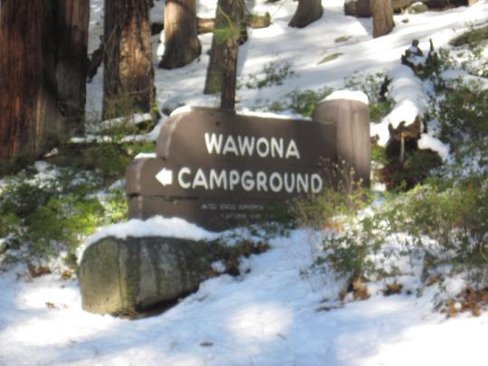 Wawona Campground Pet Policy