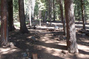 Pet Friendly Upper Billy Creek Cg Campground