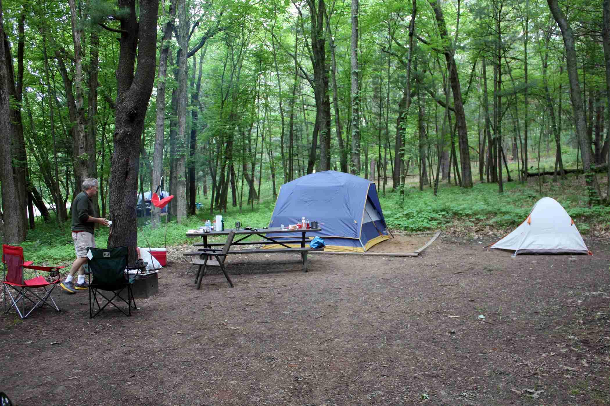 Dog Friendly Campgrounds In Wisconsin