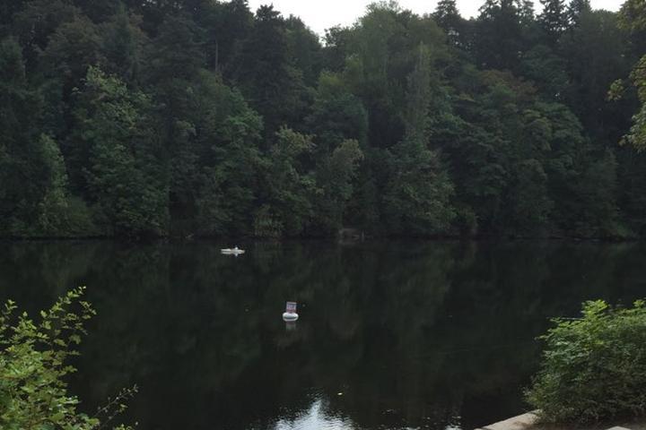 Pet Friendly Lake Fenwick Park