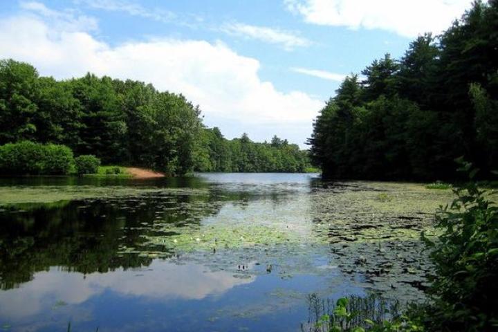 Pet Friendly Lake Wintergreen at West Rock Ridge State Park