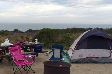 Pet Friendly San Onofre State Beach Campground