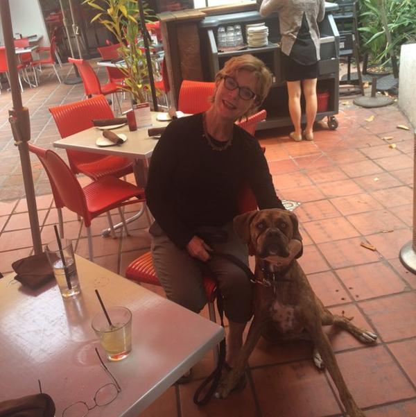Dog Friendly Hotels Rocklin Ca