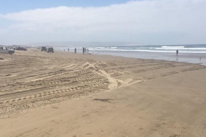 Pet Friendly Pismo Beach State Beach