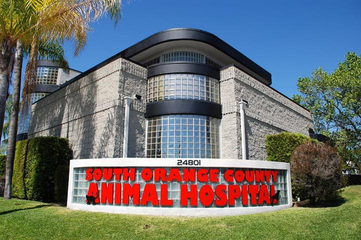Pet Friendly South Orange County Animal Hospital