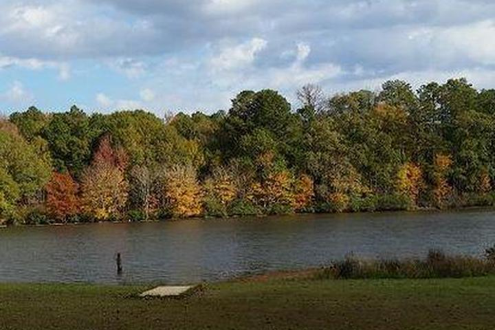 Pet Friendly Lake Lowndes Campground