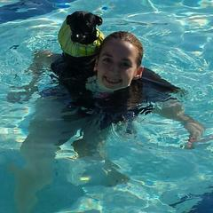 Paws-in-the-Pool Event